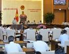 Chưa đồng ý trình Quốc hội sửa một loạt luật về điều kiện kinh doanh
