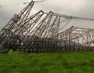 Xử lý trách nhiệm cá nhân vụ đổ cột điện đường dây 500kV