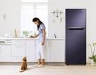Pebble Blue - Tủ lạnh cho cuộc sống hiện đại