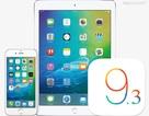 Apple iOS 9.3 chính thức được phát hành
