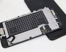 Mở máy, khám phá bên trong iPhone 7 và 7 Plus màu Jet Black đầu tiên tại Việt Nam