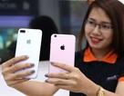"""Hình ảnh iPhone 7 Plus """"đọ dáng"""" cùng iPhone 6S Plus tại Việt Nam"""