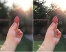 Chiêm ngưỡng khả năng chụp xóa phông trên iPhone 7 Plus