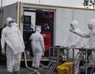 Điều tra bệnh sử 4 người cùng công ty bị sốt khi từ Dubai về