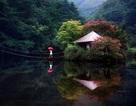 Nao lòng với cảnh thiên nhiên tuyệt đẹp như soi bóng nước gương hồ ở Hàn Quốc