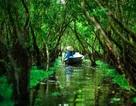 Việt Nam tuyệt đẹp dưới ống kính nhiếp ảnh gia người Pháp