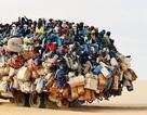 """Những kiểu chở hàng """"chẳng giống ai"""" ở châu Phi"""