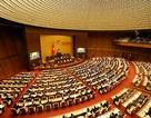 Dừng giải ngân gói 30.000 tỉ đồng: Đề nghị hỗ trợ tiếp lãi suất ưu đãi
