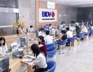 Bộ Tài chính yêu cầu VietinBank, BIDV trả cổ tức bằng tiền mặt