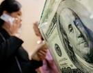 Dự trữ ngoại hối quốc gia vừa có thêm 7 tỷ USD?