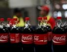 Phó Thủ tướng lưu ý nghĩa vụ thuế với lãnh đạo Coca Cola