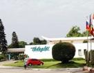 Khách sạn Thắng Lợi bị xử phạt do chậm đăng ký công ty đại chúng