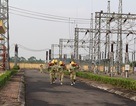 Sự cố tràn 1,5 tấn dầu tại trạm biến áp 220kV Vĩnh Yên đã được khắc phục