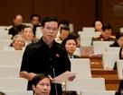 Ông Triệu Tài Vinh: Tư thương Trung Quốc ép giá, lũng đoạn thị trường nông sản việt