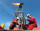 Năng suất lao động ở Việt Nam: Ngành khai khoáng vô địch!