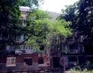 Chung cư bỏ hoang không ai dám vào ở Sài Gòn