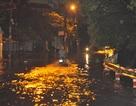 """Sài Gòn rối loạn trong mưa to """"lịch sử"""""""