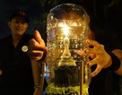 Người Thái tại TPHCM lặng lẽ đón lễ thả đèn Loy Krathong