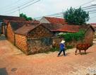 Hà Nội chi gần 13 tỷ tu bổ 10 nhà cổ Đường Lâm