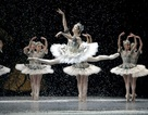 9 trích đoạn ballet kinh điển thế giới sẽ được biểu diễn tại Việt Nam