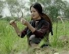Điện ảnh Việt Nam được chọn là điểm nhấn của LHP Philippines