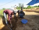 Quảng Trị: Khai quật khảo cổ tại Dinh Trà Bát và Dinh Cát