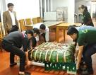 """Gói bánh chưng """"khủng"""" dâng lễ kỷ niệm 225 năm ngày mất Đại danh y Hải Thượng Lãn Ông"""