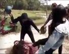 Vụ nữ sinh 12 bị nhóm bạn đánh hội đồng: Nữ sinh chủ mưu phải viết tường trình