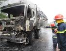 CSGT giải cứu đàn bò trên chiếc xe tải gặp tai nạn, bốc cháy