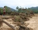 Đốc thúc người dân vùng rốn lũ khôi phục sản xuất để tránh đói vụ đông