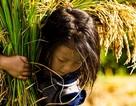 Nhiếp ảnh gia gắn bó với Việt Nam chụp ảnh chân dung đẹp nhất