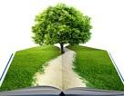 Sách thiếu nhi đọc xong có thể... trồng thành cây xanh