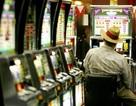 Hoãn xử vụ kiện đòi 55 triệu USD thắng qua máy đánh bạc
