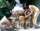 Cỗ xe tam khuyển và cuộc đời buồn của người đàn bà nghèo