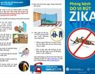Việt Nam sử dụng test nhanh phát hiện Zika