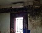 Bệnh viện Bạch Mai dừng thu tiền phòng dịch vụ mốc meo
