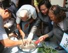 Chủng Zika tại Việt Nam ít gây hội chứng đầu nhỏ
