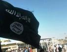 IS bán hàng trực tuyến để chiêu mộ tân binh