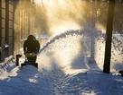 Mỹ bắt đầu dọn dẹp sau trận bão tuyết dữ dội