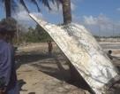 Vật thể dạt vào biển Thái Lan có thể là mảnh vỡ tên lửa từ Nhật Bản