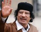 Xuất hiện video về những phút cuối đời của tổng thống Libya Gaddafi