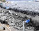Nhật Bản tiếp tục xê dịch về gần Mỹ sau thảm họa động đất