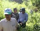 """""""Làm đường xuyên Vườn quốc gia Cát Tiên chẳng khác nào chơi dao hai lưỡi"""""""