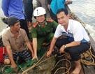 """Thưởng """"nóng"""" nông dân bắt cá sấu trên sông Soài Rạp"""
