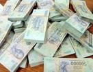 Chuyên viên phòng giáo dục kê khống, chiếm đoạt gần 400 triệu đồng