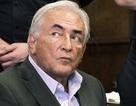 Cựu giám đốc IMF có thể được trắng án