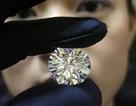 Tìm thấy viên kim cương trị giá 16.500 USD trong bụng kẻ trộm