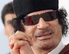 Gadhafi bác tin tháo chạy sang Niger