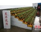 Trung Quốc lại gây rối ở Hoàng Sa và Trường Sa