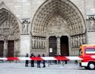 Sử gia danh tiếng Pháp tự sát trong Nhà thờ Đức Bà Paris